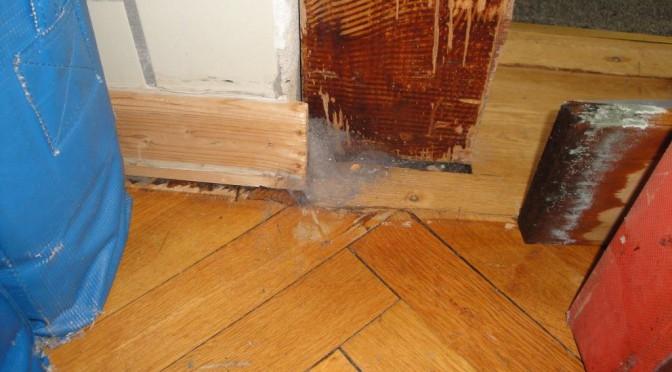 19. Dezember | Mauern sind feucht und Turngeräte verschimmeln